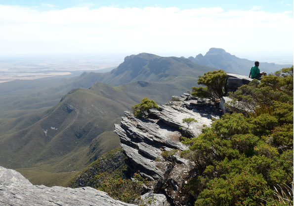 Moderately south-dipping recrystallized quartzites of the Stirling Range Formation, Barren Basin, Albany–Fraser Orogen. View from top of Bluff Knoll, looking east